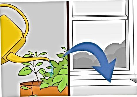 Засаждане на закрита билкова градина