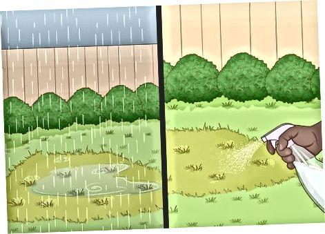 Märän sovelluksen suihkuttaminen kasveille ja puille
