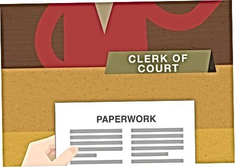 Depunerea documentelor la Curte