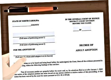 Finalizarea Adopției