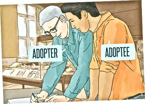 Evitarea capcanelor de adopție a adulților