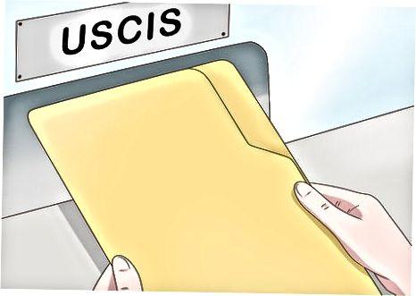 Începerea procedurilor în Statele Unite