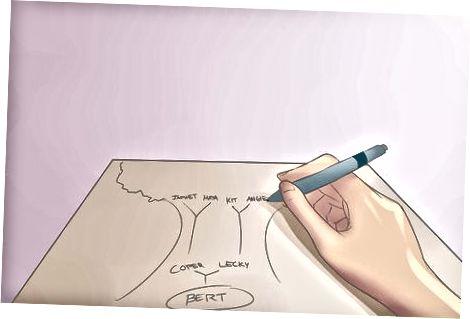 Crearea diagramei