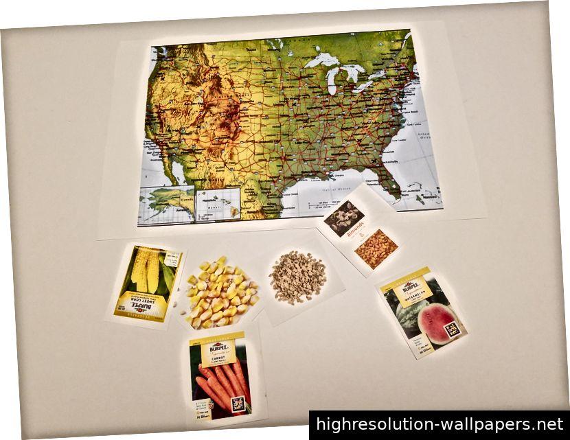 In diesem Puzzle werden die Menschen aufgefordert, das Saatgut mit den entsprechenden Lebensmitteln zu sortieren und auf dem Teil der Karte zu platzieren, der am besten zu ihren Umweltbedürfnissen passt