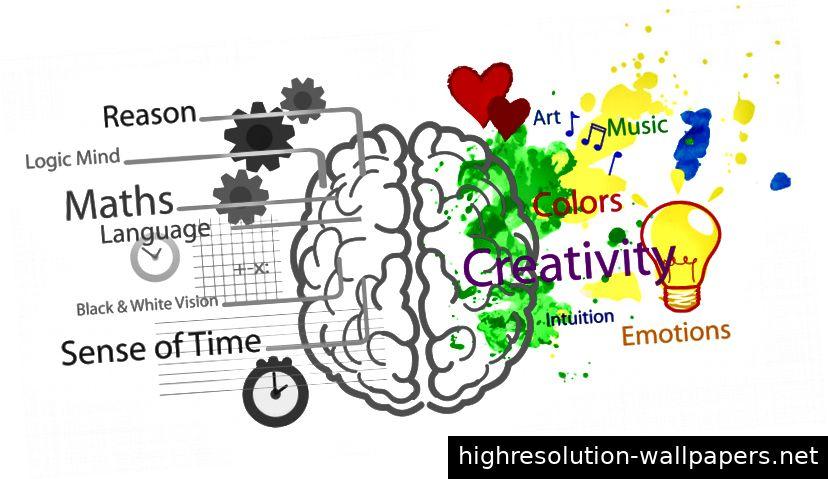 Analytisches vs. kreatives Gehirn