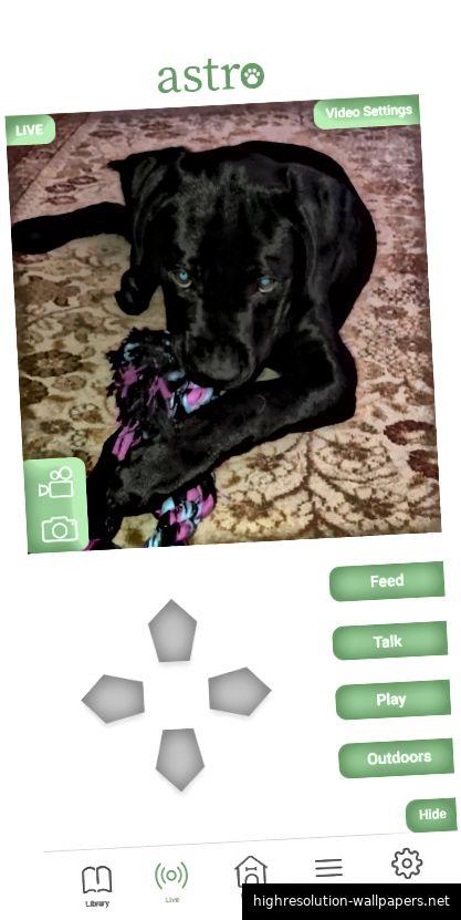Überwachung des Hundes. Von links nach rechts der Startbildschirm, der Live-Bildschirm und der Live-Bildschirm mit manuellen Steuerelementen