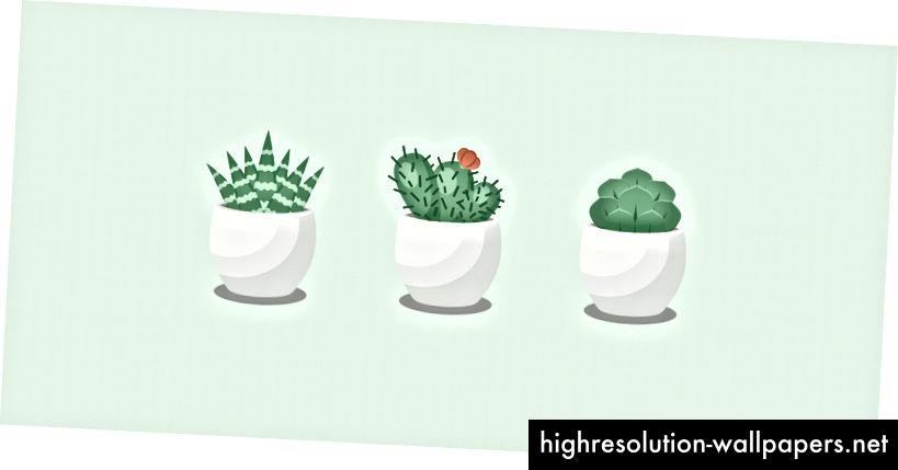 100 dage med vektor - Succulent Series