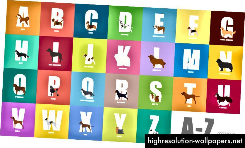 100 ημέρες διάνυσμα - αλφάβητο σκυλιών
