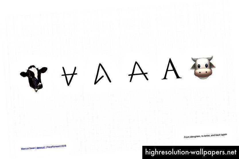 Sporing af udviklingen fra fønikisk piktogram til ko, til A-fonemer og tilbage til ko igen.