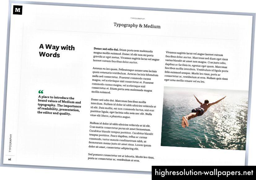 Eksempler på brugstype hjælper designere med at forstå, hvordan man bruger skrifttypen.