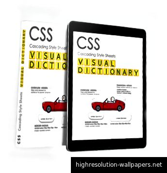 CSS Visual Dictionary 28% FRA for mellemstore læsere.