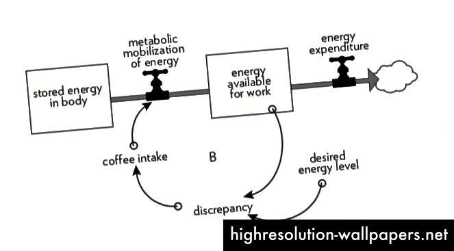 Una mappa di sistemi molto divertente dei livelli di energia di un bevitore di caffè