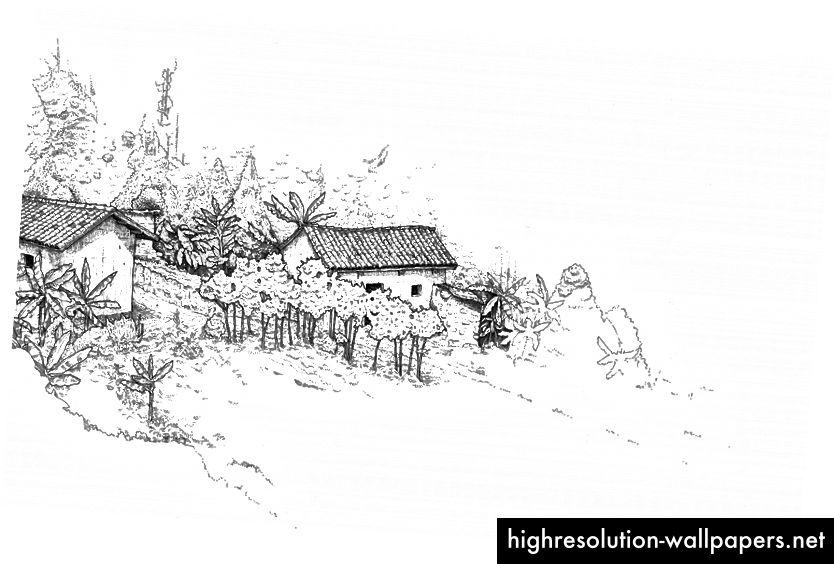 Illustration til kapitel 15, Borderlands nær Ngozi, Burundi, af Lee John Phillips. En af 69 i håndbogen.