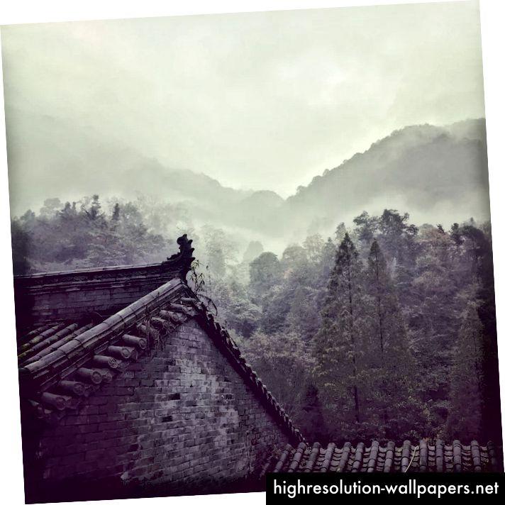 Field Sichuan