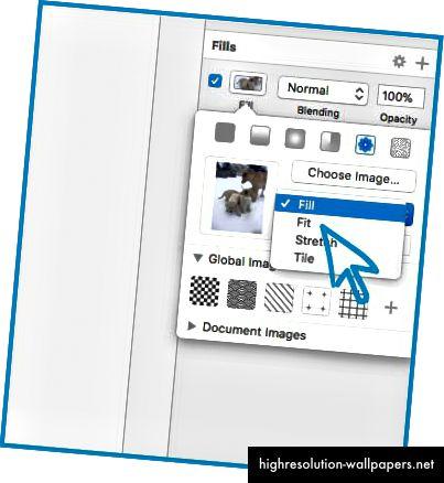 Μπορείτε να καθορίσετε τον τρόπο με τον οποίο θέλετε οι εικόνες να γεμίζουν το σχήμα: Γεμίστε, Τοποθετήστε, Τεντώστε ή Πλακάκι.