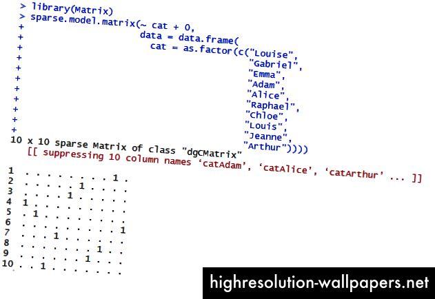 Sparse One-Hot Encoding i R. Der er ingen forskel i den tætte version, bortset fra at vi ender med en sparsom matrix (dgCMatrix: sparse kolonnekomprimeret matrix).