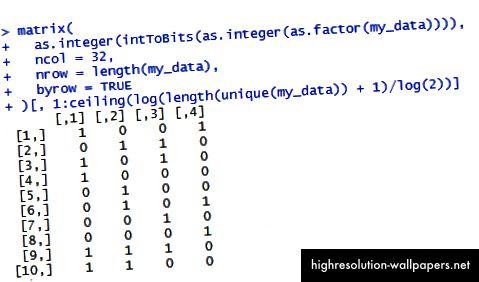 Binær kodning i base R.