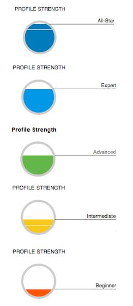 """Dizajneri na LinkedInu rade sjajan posao na uključivanju """"spektra napretka"""" u svoje mjere za određivanje snage profila; nikad ne može biti uistinu cjelovito, niti uistinu prazno - radije, svi profili postoje u beskonačnom spektru - uvijek je potreban zadatak koji treba ispuniti."""