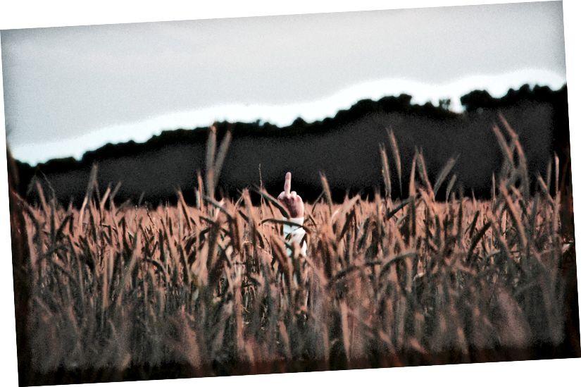 Foto de WATARI en Unsplash
