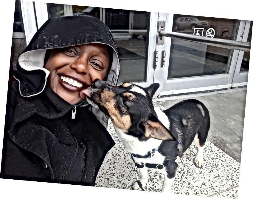 En av mina fem favorithundar att umgås med som hundvandrare. Även om jag aldrig är nöjd när hundar fångar mig i en kyss nära munnen, älskar jag denna hund så att han fick ett gratispass. (Fotokredit: Shamontiel L. Vaughn)