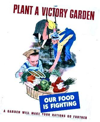 Uzvaras dārzi palīdzēja papildināt ēdienu kara laika normēšanas laikā