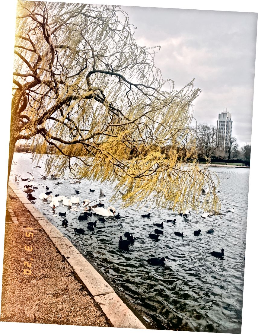 A 2 órás séta a Hyde Parkban látszólag fertőzésmentes.