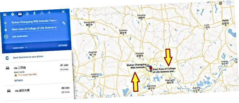 Suunta Wuhan Changqingin villieläinten transaktiomarkkinoilta Huazhongin maatalousyliopistoon (paperin kiinalainen liitto)