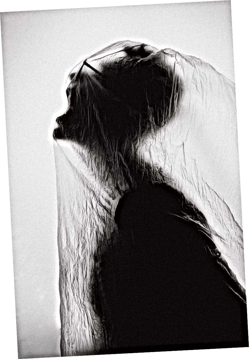 Foto de Cristian Newman en Unsplash