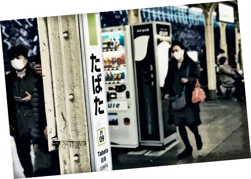 Fotó: Zhipeng Ya az Unsplash-en
