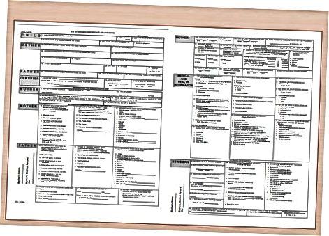 Reikalingų dokumentų ir nuotraukų rinkimas