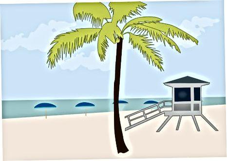 Други дестинации във Флорида / информация