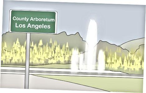 Преглед јесењег лишћа у јужној Калифорнији