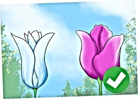 Zgjedhja e tulipanëve të duhur për të ngrënë