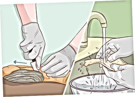 Fleisch reinigen