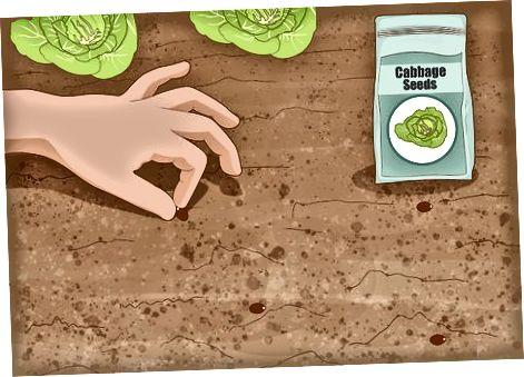 برش گلیفوزات از رژیم غذایی شما