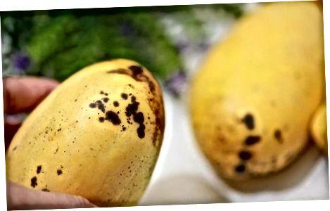 Qisqa muddatga mangolarni saqlash