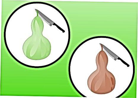 Greenscaping Kürbisse