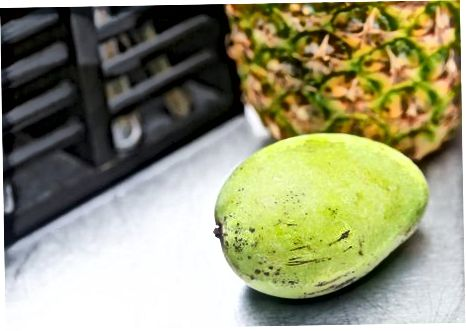 Mango yetişdirir