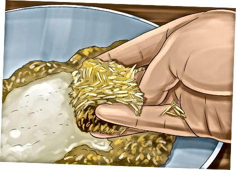 पनीर के लिए पोषण खमीर का प्रतिस्थापन