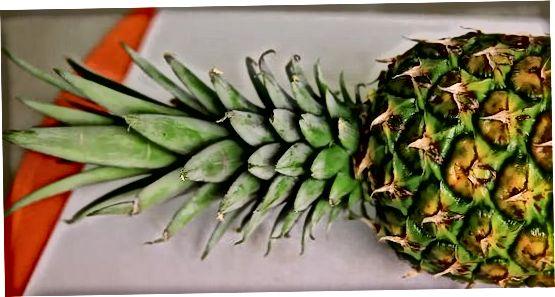 Ananaso pasirinkimas