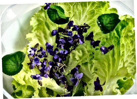 Violetinės žalumynų salotos