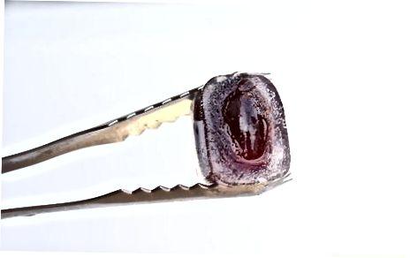 Shërbyer rrushit