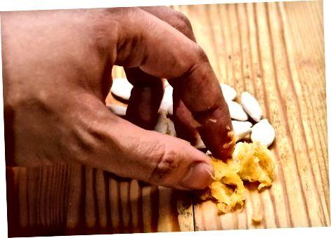 Descascar sementes de abóbora, uma de cada vez