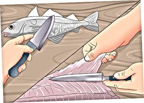 Замрзавање риба