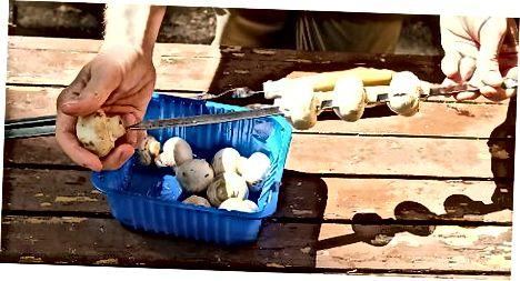 Making Kebabs me kërpudha të pjekura në skarë