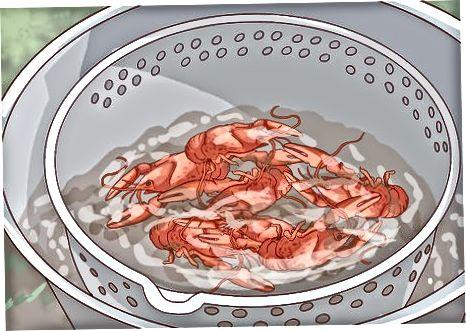 Crawfish qaynashiga mezbonlik qilish