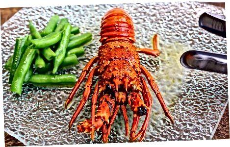 Vypúšťanie a podávanie homára