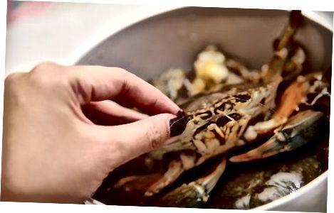Krabben knacken und reinigen