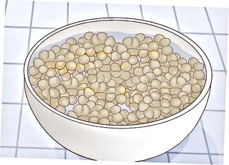 Pulset e njomjes dhe gatimit