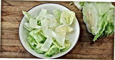 Escolhendo a base para sua salada